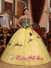 Colon Cuba Light Yellow Strapless For Beautiful 2013 Spring sweet sixteen Dress With Embroidery and Hand Made Flowers Style QDZY233FOR