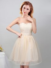 Edgy Sweetheart Sleeveless Tulle Damas Dress Lace and Appliques Lace Up