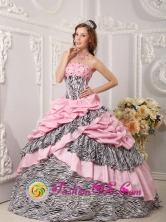 2013 Almolonga Guatemala Pink Quinceanera Dress Taffeta and Zebra For Sweet 16 With Pick-ups Beading Ball Gown Style QDZY017FOR