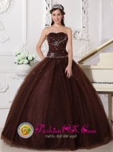 Potrero Grande Panama Brown Customer Made Rhinestones Decorate Bodice Modest Quinceanera Dress Sweetheart Tulle Ball Gown Style  QDZY306FOR