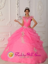Latest Rose Pink Quinceanera Dress Prescott Valley V-neck Taffeta and Organza Appliques With Beading Decorate Bodice Ball Gown For 2013 Spring Jarabacoa Dominican Style QDZY267FOR