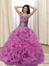 Elegant Appliques and Rolling Flowers Multi Color 2015 Quinceanera Dresses SJQDDT20002-1FOR