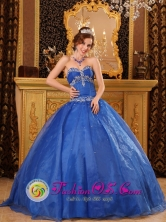Affordable Blue Organza Quinceanera Dress with Appliques For 2013  Corozal Colombia Wholesale Sweetheart   Style QDZY086FOR