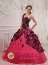2013 Yoro Honduras One Shoulder Hand Zebra Made Flowers Sweet 16 Dress Coral Red For Quinceanera  Style QDZY384FOR